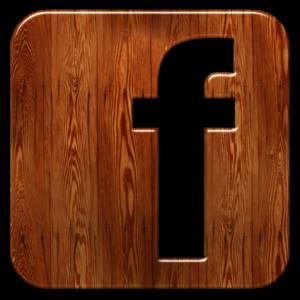 logofacebookbois-1